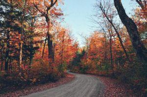 Autumn-Canada